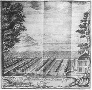 Prospekt der Brunnenkresse-Klingen-Anlage nach Chr. Reichart
