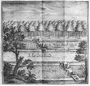 Setzen der Kresse-Stecklinge in den Klingengrund nach Chr. Reichart
