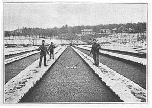 Patschen der Brunnenkresse mit Patschbrett im Winter